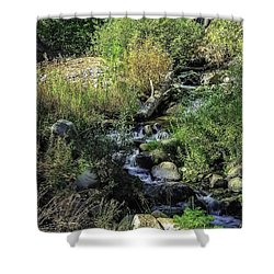 Bubbling Brook Shower Curtain