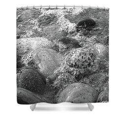 Bubbling Stones Shower Curtain