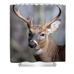 Buck Headshot Shower Curtain