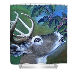 Shower Curtain featuring the painting Buck by Mary Ellen Frazee