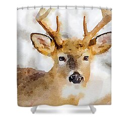 Shower Curtain featuring the painting Buck Profile by Steven Santamour