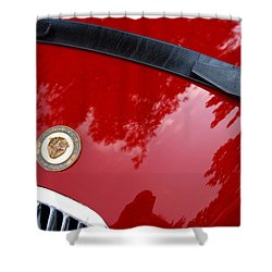 Shower Curtain featuring the photograph Buckle Up by John Schneider
