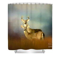 Bucks In The Meadow Shower Curtain by Myrna Bradshaw