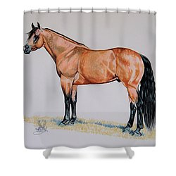 Buckskin Beauty Shower Curtain