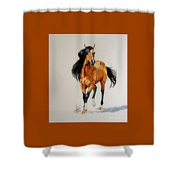 Buckskin Thoroughbred Shower Curtain