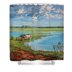 Bucolic St. John's Shower Curtain by AnnaJo Vahle