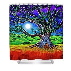 Buddha Healing The Earth Shower Curtain