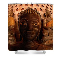 Shower Curtain featuring the photograph Buddha Laos 1 by Bob Christopher