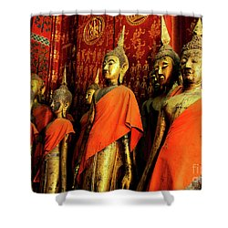 Shower Curtain featuring the photograph Buddha Laos 2 by Bob Christopher