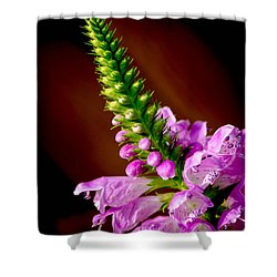 Budding Beauty Shower Curtain