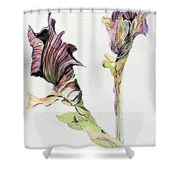 Budding Irises Shower Curtain