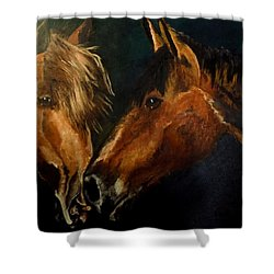 Buddy And Comet Shower Curtain by Maris Sherwood