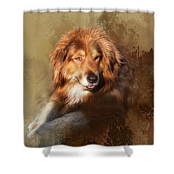 Buddy Shower Curtain by Theresa Tahara
