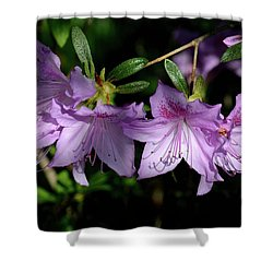 Shower Curtain featuring the photograph Buds And Blooms by Angie Tirado