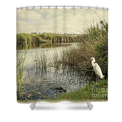 Buena Vista Lagoon-snowy Egret Shower Curtain
