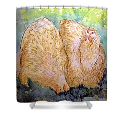 Buff Orpington Hens In The Garden Shower Curtain