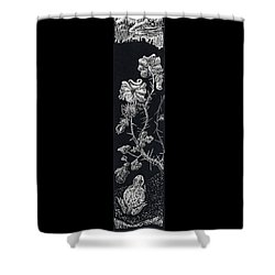 Shower Curtain featuring the drawing Buffalo Burr And Toad by Dawn Senior-Trask
