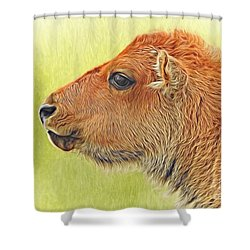 Buffalo Calf Two Shower Curtain
