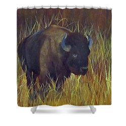 Buffalo Grazing Shower Curtain