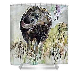 Buffalo Shower Curtain by Khalid Saeed