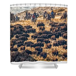 Buffalo Roundup Shower Curtain