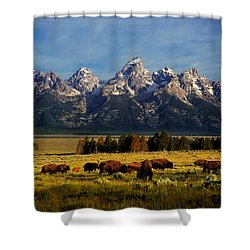 Buffalo Under Tetons Shower Curtain by Leland D Howard