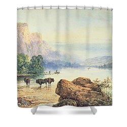 Buffalo Watering Shower Curtain by Thomas Moran
