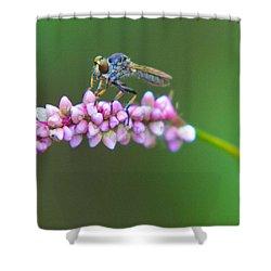 Bug Eyed Shower Curtain