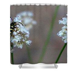 Bug On Flower Shower Curtain