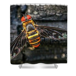 Bug With Red Eyes Shower Curtain