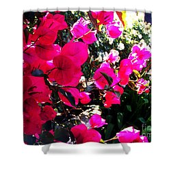 Shower Curtain featuring the photograph Bugambilia by Vanessa Palomino