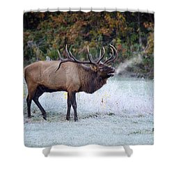 Bugle Of The Elk Shower Curtain