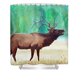 Bugling Elk Shower Curtain by Sherril Porter