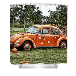 Bugs In The Patch Again Shower Curtain by Scott Wyatt