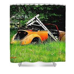 Shower Curtain featuring the photograph Bugsy by Sadie Reneau