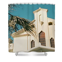 Building Behind Palm Tree In Ostia, Rome Shower Curtain