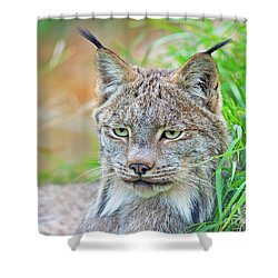 Shower Curtain featuring the photograph Built In Hearing Aid.. by Nina Stavlund