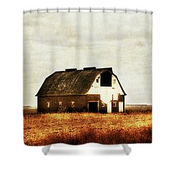 Shower Curtain featuring the photograph Built To Last by Julie Hamilton