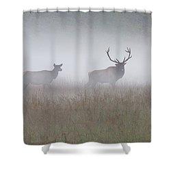 Bull And Cow Elk In Fog - September 30 2016 Shower Curtain