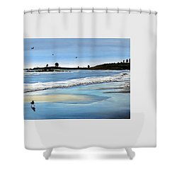 Bull Beach 2 Shower Curtain