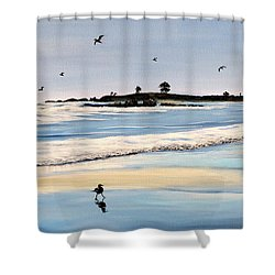 Bull Beach Shower Curtain