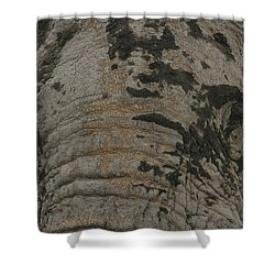 Shower Curtain featuring the photograph Bull Elephant Close-up by Gary Hall