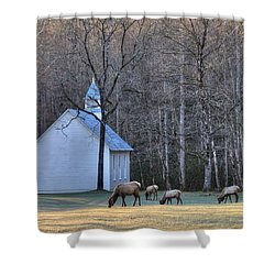 Bull Elk Attending Palmer Chapel  In The Great Smoky Mountains National Park Shower Curtain