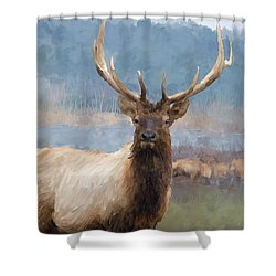 Bull Elk By The River Shower Curtain