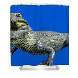 Bull Gator Transparent For T Shirts Shower Curtain