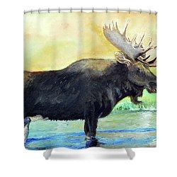 Bull Moose In Mid Stream Shower Curtain by Sherril Porter