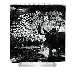 Bull Moose Shadow Shower Curtain
