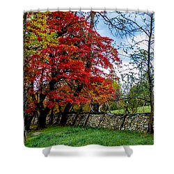 Bull Run Mountain 10 Shower Curtain