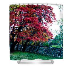 Bull Run Mountain 9 Shower Curtain