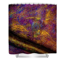 Shower Curtain featuring the photograph Bull Rust by Paul Wear